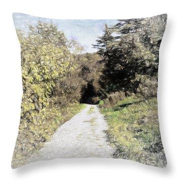 Long Trail Throw Pillow by Rena Trepanier
