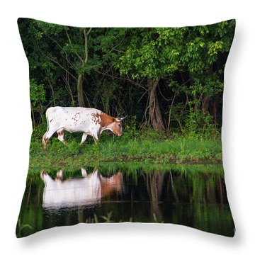 Longhorn #2 Throw Pillow