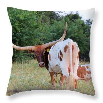 Longhorn Cattle Throw Pillow
