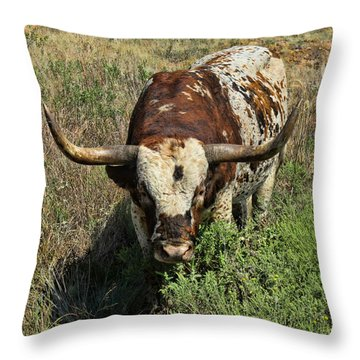 Longhorn II Throw Pillow