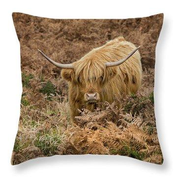 Longhorn On Dartmoor Throw Pillow