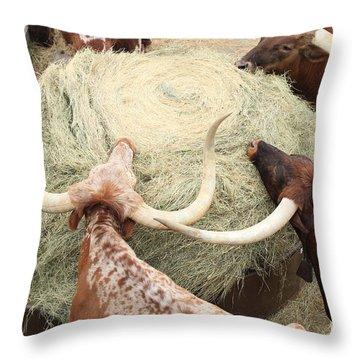 Longhorn Puzzler Throw Pillow