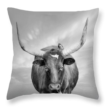 Throw Pillow featuring the photograph Longhorn Respite by Robin-Lee Vieira