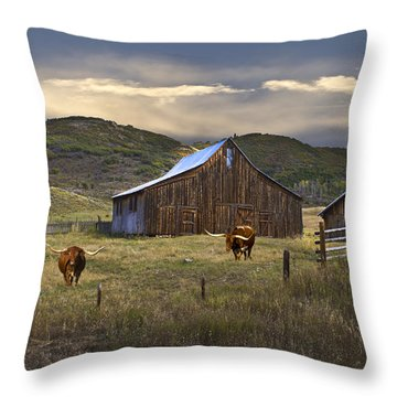 Throw Pillow featuring the photograph Longhorns On The Road To Steamboat Lake by John Hix