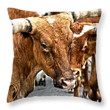 Longhorns Throw Pillow by Toni Hopper