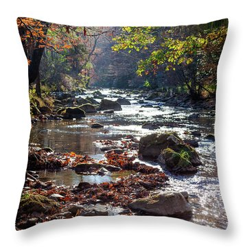 Longing For Home Throw Pillow by Karen Wiles