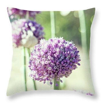 Throw Pillow featuring the photograph Longing For Summer Days by Linda Lees
