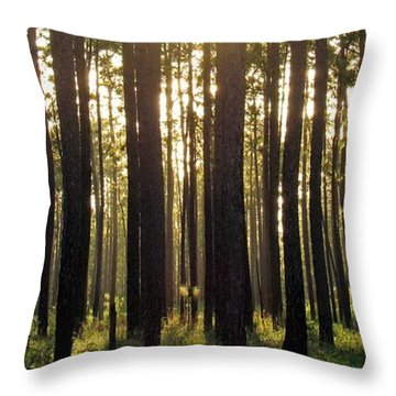 Longleaf Pine Forest Throw Pillow