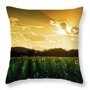 Throw Pillow featuring the photograph Longmont Summer Skies 2 by John De Bord