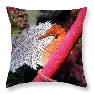 Longsnout Seahorse, Roatan, Honduras Throw Pillow