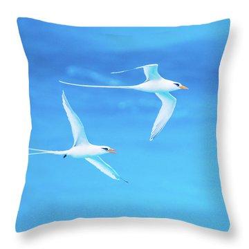 Longtail Dream Team Throw Pillow