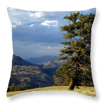 Lonly Tree Throw Pillow by Marty Koch