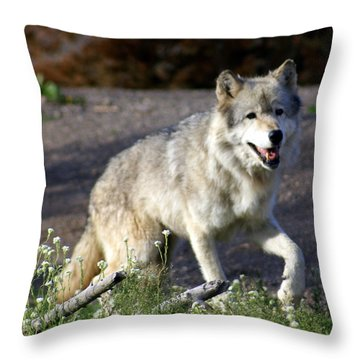 Lonly Wolf Throw Pillow by Marty Koch