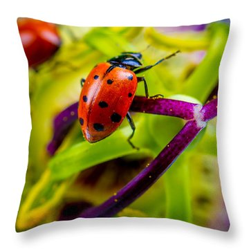 Look At The Colors Over There. Throw Pillow
