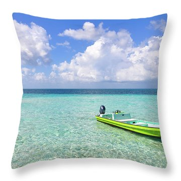 Look At This Beautiful Blue Water Throw Pillow