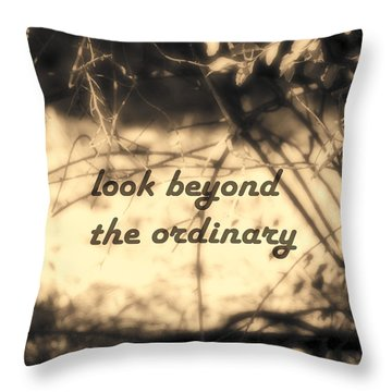 Look Beyond Throw Pillow by Ann Powell