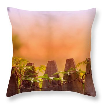 Look Beyond The Boundary Throw Pillow