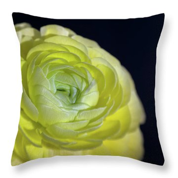 Look Into My Heart Throw Pillow