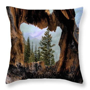 Look Into The Heart Throw Pillow
