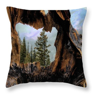 Look Into The Heart Throw Pillow by Jim Hill