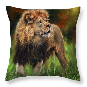 Look Of The Lion Throw Pillow by David Stribbling