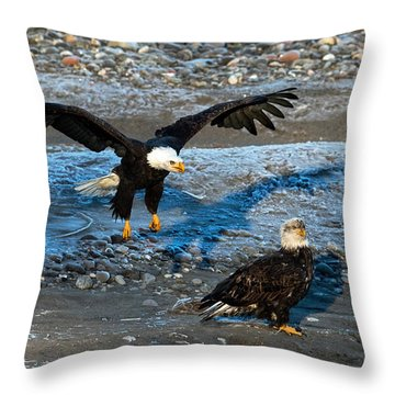 Look Out From Above Throw Pillow