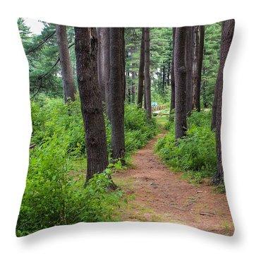 Look Park Nature Path Throw Pillow