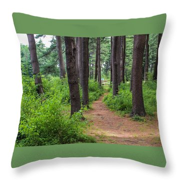 Look Park Nature Path Throw Pillow