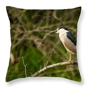 Look The Other Way Throw Pillow