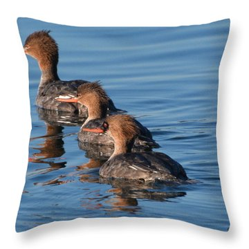 Look This Way Throw Pillow by Dan Williams