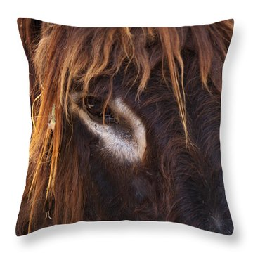 Look To Me Throw Pillow by Angela Doelling AD DESIGN Photo and PhotoArt