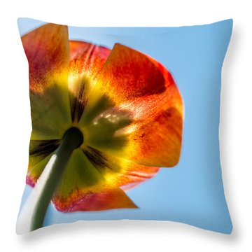 Look To The Source Throw Pillow