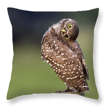 Look What I Can Do Throw Pillow