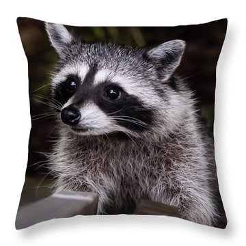 Throw Pillow featuring the photograph Look Who Came For Dinner by Jordan Blackstone