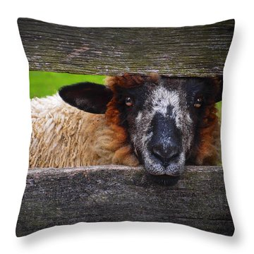 Lookin At Ewe Throw Pillow
