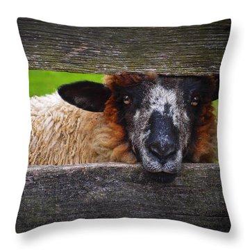 Lookin At Ewe Throw Pillow
