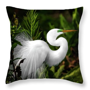 Lookin' For Love Throw Pillow