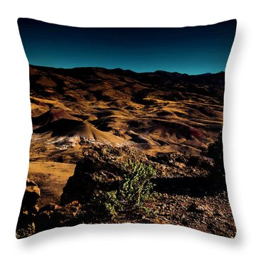 Looking Across The Hills Throw Pillow