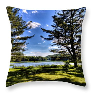 Looking At The Moose River Throw Pillow by David Patterson