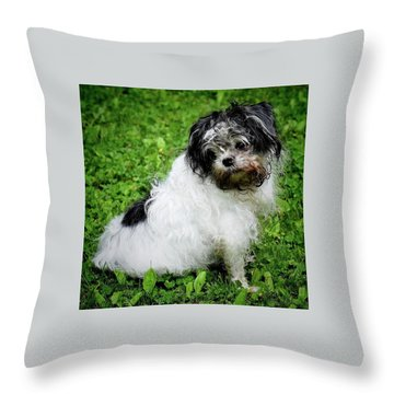 I Was Not In The Dirt Again.... Throw Pillow