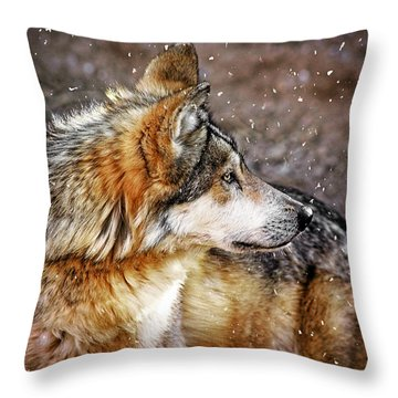 Throw Pillow featuring the mixed media Looking Back by Elaine Malott