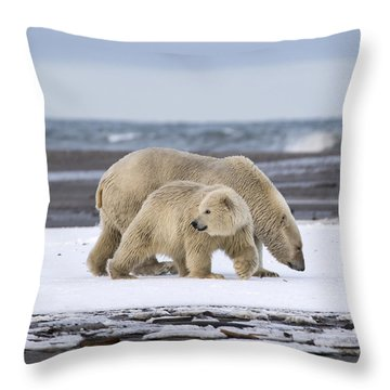 Looking Back In The Arctic Throw Pillow