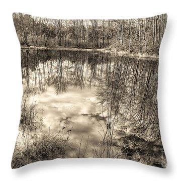 Throw Pillow featuring the photograph Looking Down by Betsy Zimmerli
