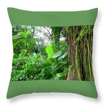 Looking Down From Yokahu Throw Pillow