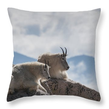 Looking Down On The World Throw Pillow by Gary Lengyel