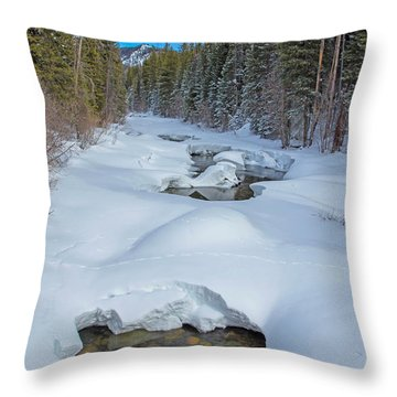 Looking Down The Elk Throw Pillow