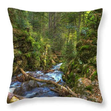 Looking Down The Gorge Throw Pillow