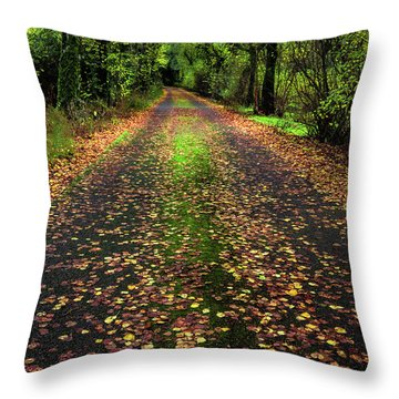 Looking Down The Lane Throw Pillow