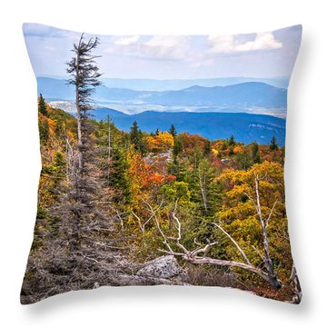 Looking East From Bear Rocks 4290c Throw Pillow