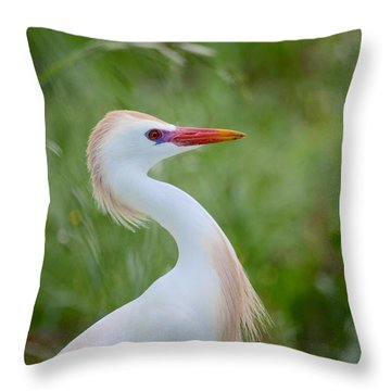 Looking For A Mate Throw Pillow by Kathy Gibbons